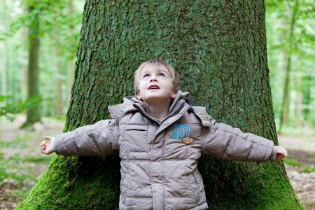 Little boy looking up and leaning on a big tree trunk