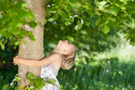 Young girl hugging a tree trunk while looking up into the leafy green branches