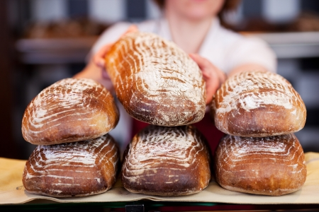 wholemeal: Female worker stacking freshly baked handmade loaves of bread in a bakery