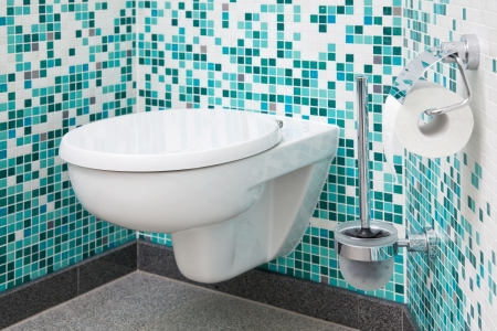 inodoro: El asiento del inodoro y papel en el ba�o limpio