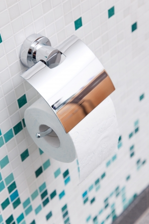 toilet paper in a modern bath room Stock Photo - 21301305