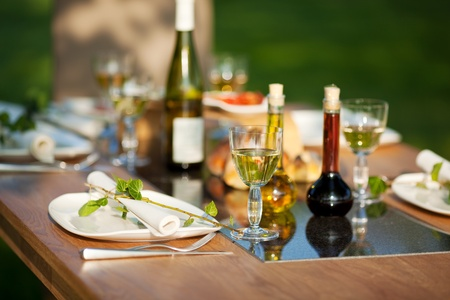 View of table setting in lawn photo