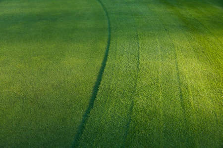 mow: Full frame shot of green field at golf