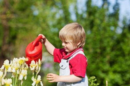 regar las plantas: El niño pequeño está regando flores en el jardín