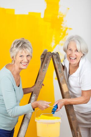 Portrait of happy senior women painting wall together photo