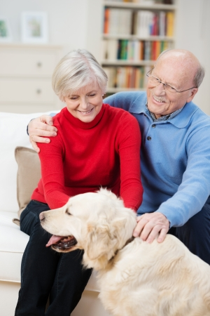 Happy golden retriever with its elderly owners panting happily as it is being stroked by a senior couple sitting in their living room photo