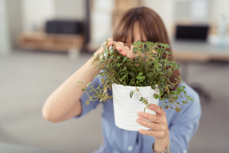 grotesque: Young Office Woman Peeking Through Small Green Plants in White Vase on her Hand