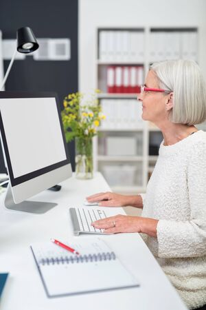 blank screen: Gray-Haired Middle Aged Businesswoman Working on her Computer at her Desk Inside the Office.