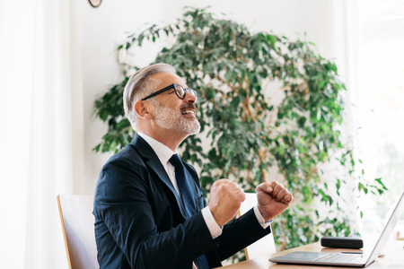 Jubilant businessman cheering at a business success punching the air with his fists as he sits at his desk in the office Banque d'images - 114853229