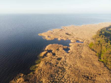 Aerial view of coastal wetlands dotted with numerous inlets and golden grasses bordered by inland forest with a view to a distant hazy horizon