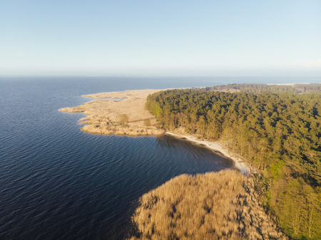 Aerial view of a coastal bay with sandy beach bordered by a dense forest of green trees in warm evening light