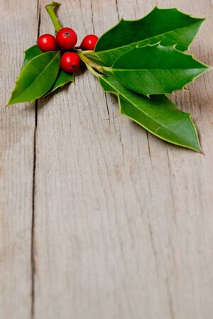 Christmas berries on wooden panels  photo