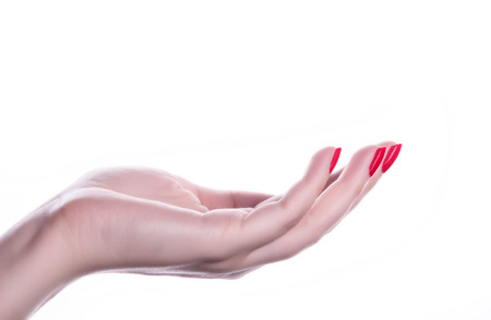 palm up beautiful woman hand with French manicure nails Foto de archivo