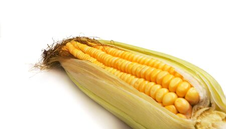 Crunchy Fresh Sweetcorn on white ground
