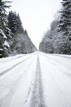 Winter road in snow forest Stock Photo - 4318422