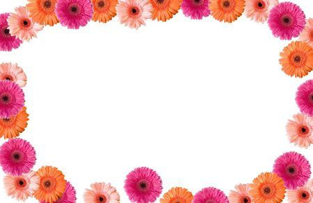 Colored gerberas frame on white ground Stock Photo - 4693724