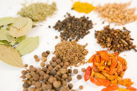 Lot of different spices on white ground photo