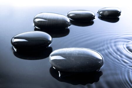 stepping: A row of shiny black pebbles in water