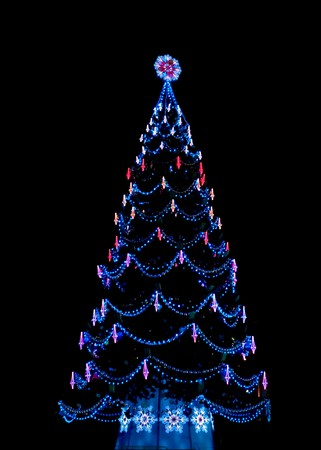 Christmas tree on black decoerated with lights.
