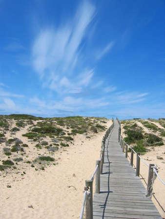 Wooden boardwalk through the sand