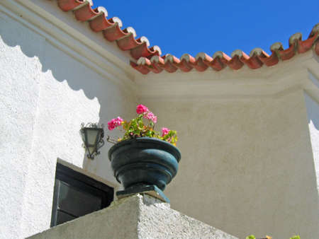 Detail of a vase with flowes, in a typical house in Sines, Portugal