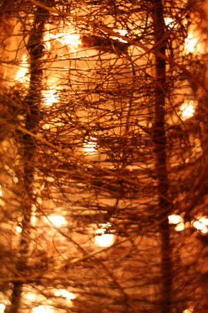 Texture of light and wires from a lamplight
