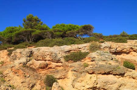 High cliffs in Algarve shore Stock Photo