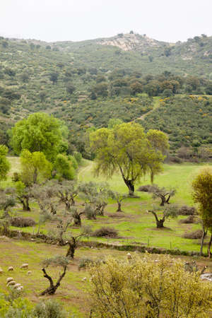 Countryside landscape in Idanha-a-Velha, Portugal Stock Photo