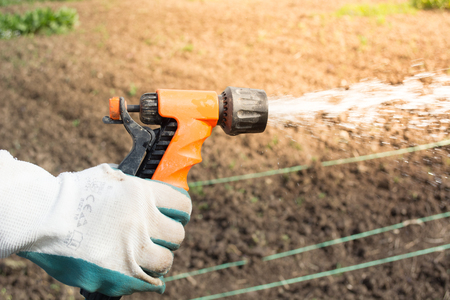 sprayed: Female hand holding sprinkler. Water is sprayed on the field