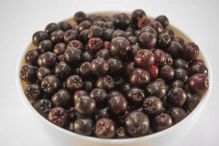 sorb: Fresh and tasty aronia in a bowl. Water droplets on fruit are visible