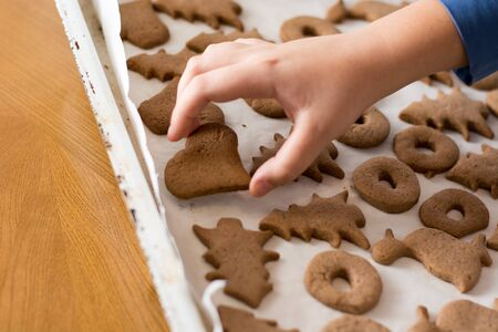 Boy picking up baked gingerbread cookie from a white plate