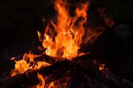 campfire close up at night