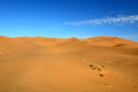 merzouga: dry Sahara desert near Merzouga in Morocco