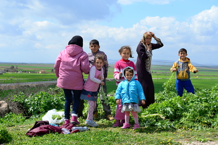 syrian civil war: Syrian people in refugee camp in Suruc. These people are refugees from Kobane and escaped because of Islamic state attack. 3.4.2015, Suruc, Turkey