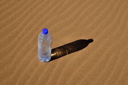 sahara: Bottle of water in Sahara