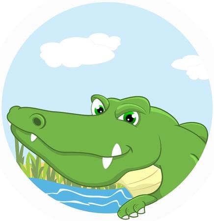 Vector Illustration Of Crocodile Stock Vector - 17438264