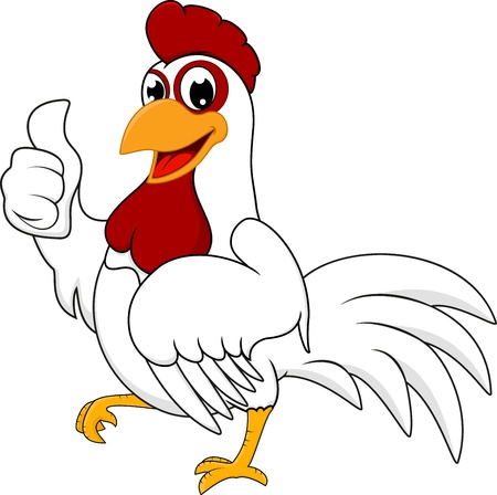 pollo caricatura: Pollo Feliz blanco con Aceptar Vectores