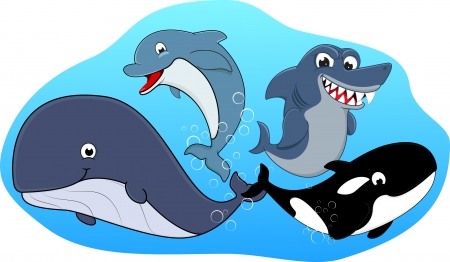 sea mammal: Vector Illustration Of Sea Mammal Set