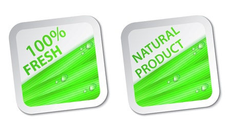 Vector Illustration Of fresh natural labels and stickers Stock Vector - 20782681