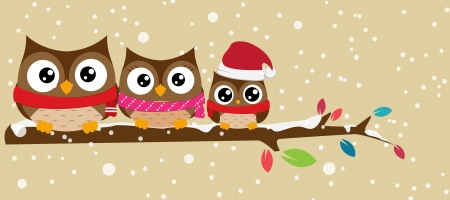 Vector Illustration  owl family on the branch christmas banner