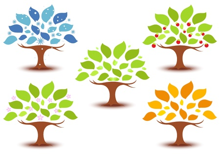 Vector Illustration of Trees on Four seasons - spring, summer, autumn, winter icon  Vector