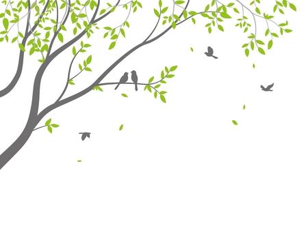 Belle branche d'arbre avec fond de silhouette d'oiseaux pour l'autocollant de papier peint Vecteurs