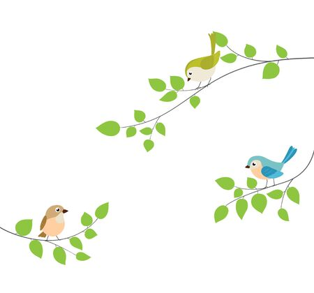 Beautiful birds sitting tree branch