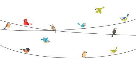 Colorful birds sitting on wire isolated on white Ilustrace
