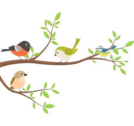 Bellissimi uccelli seduti sul ramo di un albero Vettoriali