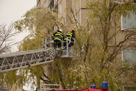 endangering: Firefighters remove heavy branches endangering citizens after ice storm