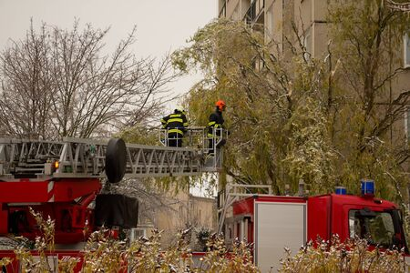 endangering: Firefighters remove heavy branches endangering citizens after ice storm.Photo taken on: December 2th, 2014 Editorial