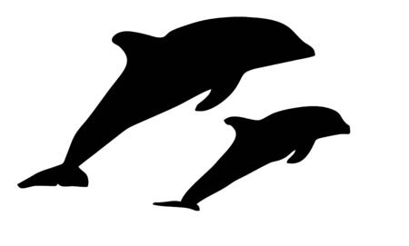 dolphin silhouette: dolphin silhouette on a white background