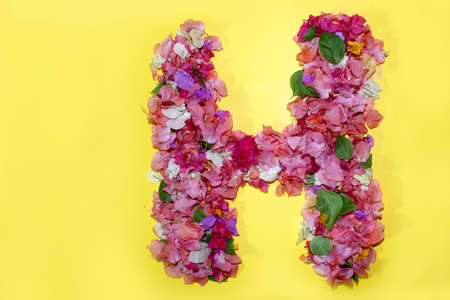 letter H flower alphabet, made from colorful bougainvillea flowers, wonderful flora letters for unique spring decorations and various creation ideas, greeting card design over on yellow background. Stock Photo