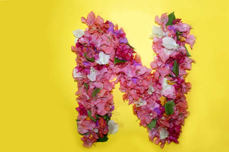 letter N flower alphabet, made from colorful bougainvillea flowers, wonderful flora letters for unique spring decorations and various creation ideas, greeting card design over on yellow background.
